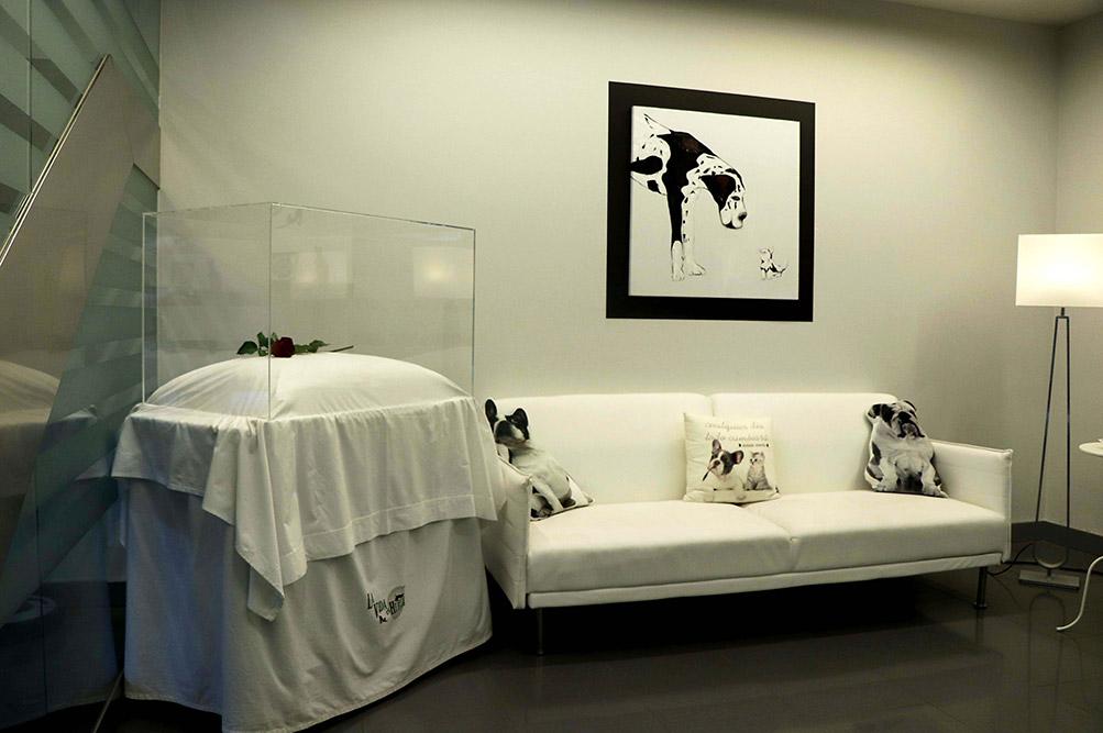 Sala del último adios - La vida es huella